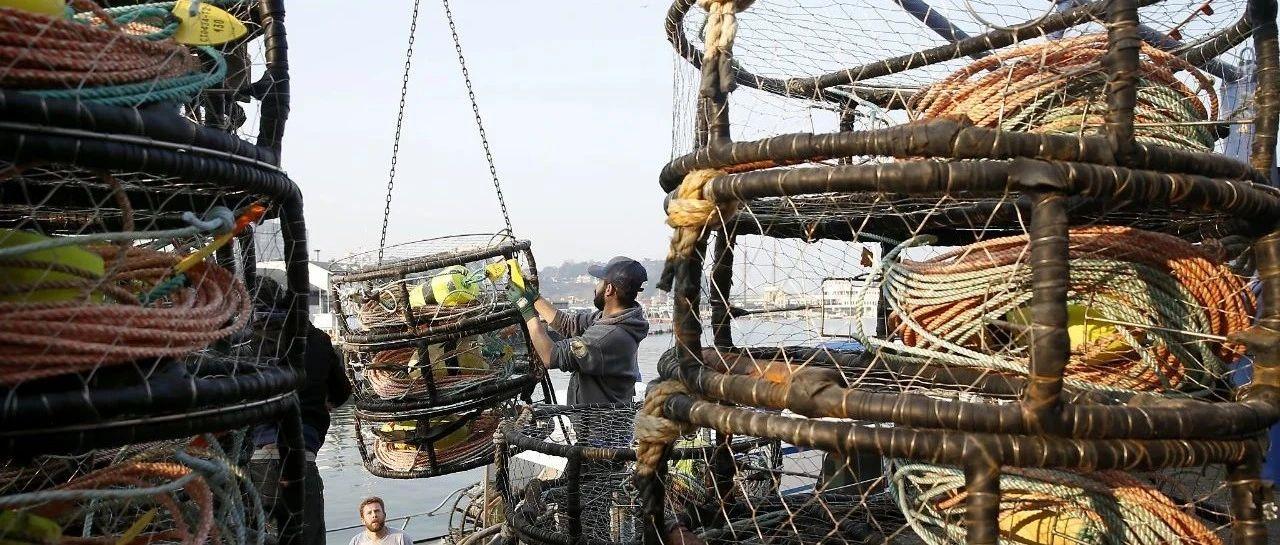 渔人码头大火烧毁旧金山蟹农价值数百万的捕捞设备, 2020年的珍宝蟹季会受影响吗?