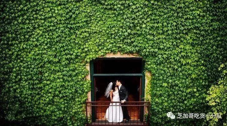 情人节求婚大作战|请收好这份芝加哥最浪漫结婚手册