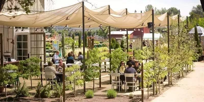 世界上最好的法式餐厅不在法国?| 探访米其林星星密度最大的小镇